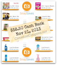 "View the ""SnapSaves $38.50 in Cash Back Rebates (Updated November 21, 2013)"" coupon page"