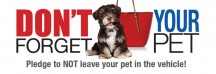 "View the ""Free SPCA No Hot Pets Car Decal #nohotpets"" coupon page"