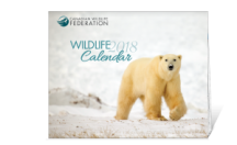"View the ""FREE 2018 Canadian Wildlife Federation Calendar!"" coupon page"