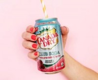 "View the ""FREE Canada Dry Club Soda Pomegranate-Cherry"" coupon page"